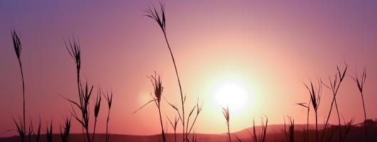 sunset-546370_1280